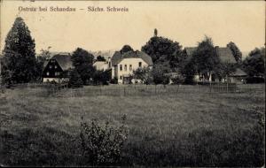 Ak Ostrau Bad Schandau Sächsische Schweiz, Sächsische Schweiz