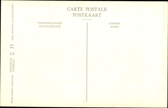 Künstler Ak Dupond, Hub., Spatule blanche, Lepelaar, Nr 77 1
