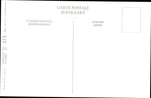 Künstler Ak Dupond, Hub., Pie grieche a poitrine rose, Kleine grijze Klauwier, Nr 173 1