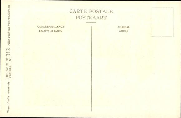Künstler Ak Dupond, Hub., Petit Pingouin, Alk, Nr 312 1