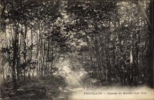 Ak Frepillon Val-d´Oise, Chemin du Moulin sous Bois