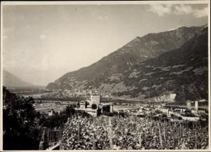 Foto Bellinzona Kanton Tessin, Weingut, Burg, Panorama vom Ort