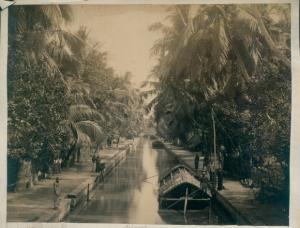 Foto Indien, Kanalpartie, Transportboote, Palmen