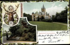 Ak Hummelshain in Thüringen, Jagdschloss, Hirsch