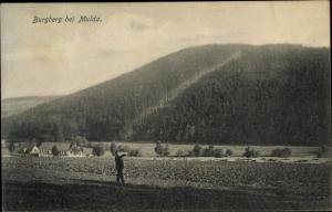 Ak Mulda Sachsen, Blick zum Burgberg, Mann auf dem Feld