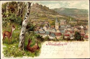 Litho Bad Blankenburg in Thüringen, Blick auf den Ort, Rehe