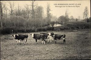 Ak Les Bordeaux Saint Clair Eure, Pâturages sur les Bords de l´Epte