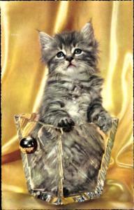 Ak Getigerte graue langhaarige Katze in einem Glas