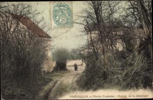 Ak Frepillon Val-d´Oise, Chemin de la Chicoulle