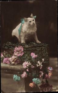 Ak Weiße langhaarige Katze, Blumen