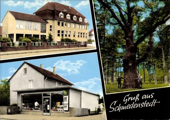 Ak Schmedenstedt Peine in Niedersachsen, Geschäft, Baum, Schule 0