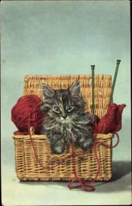 Ak Kleine langhaarige Katze in einem Weidenkorb, Strickzeug