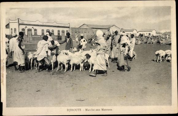 Ak Djibouti Dschibuti, Marché aux Moutons 0
