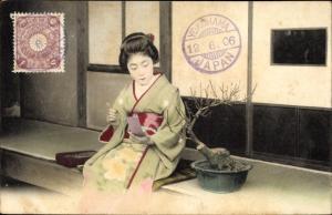 Ak Geisha, Kimono, Bonsai