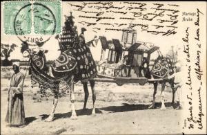 Ak Arabische Hochzeit, Kamele