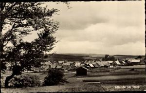 Ak Allrode Thale im Harz, Teilansicht vom Ort, Feldpartie