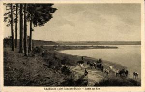 Ak Rominten Ostpreußen, Schillinnen, Seepartie