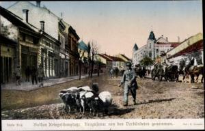Ak Kragujevac Serbien, Straßenpartie, Eingenommene Stadt, Ungarische Soldaten