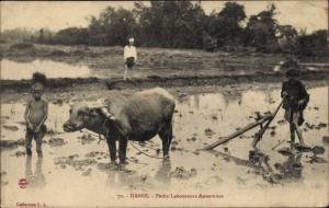 Ak Hanoi Vietnam, Petits Laboureurs Annamites