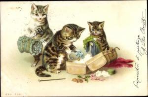 Künstler Litho Katzen räumen Koffer aus, Nr. 258