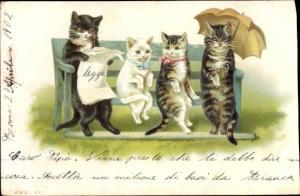 Künstler Litho Katzen sitzen auf der Bank, Schirm, Nr. 261