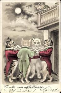 Mondschein Litho singende Katzen bei Nacht, Nr. 652