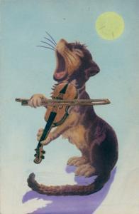 Künstler Ak Geige spielende Katze bei Mondschein, singend