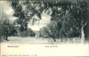 Ak Montevideo Uruguay, Paseo del Prado