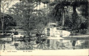 Ak Rio de Janeiro Brasilien, Jardim Botanico