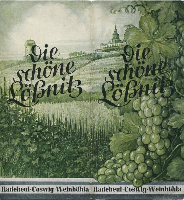 Die schöne Lößnitz 1936 - Radebeul - Coswig - Weinböhla - Faltblatt mit einer farbigen Originalzeichnung von Kunstmaler