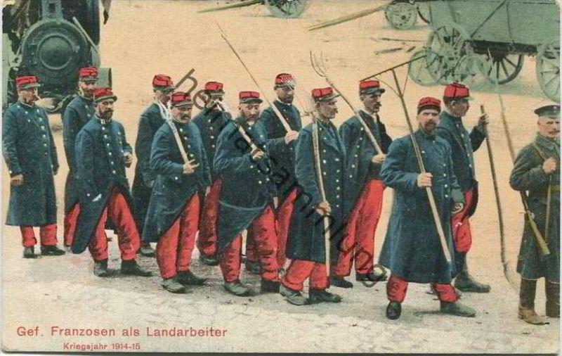 Gefangene Franzosen als Landarbeiter - Kriegsjahr 1914-15 - Feldpost Landst.-Inf.-Batl.- Wismar 2. Komp.