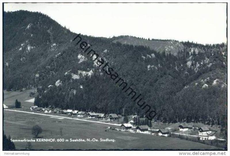 Kernhof - Siedlung - Foto-AK