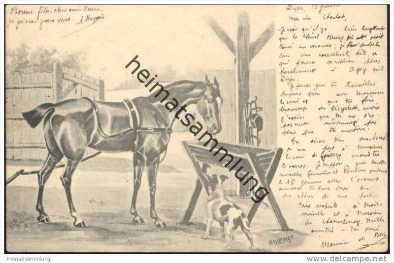 Ein Pferd und ein Hund - Künstlerkarte P. Dienst