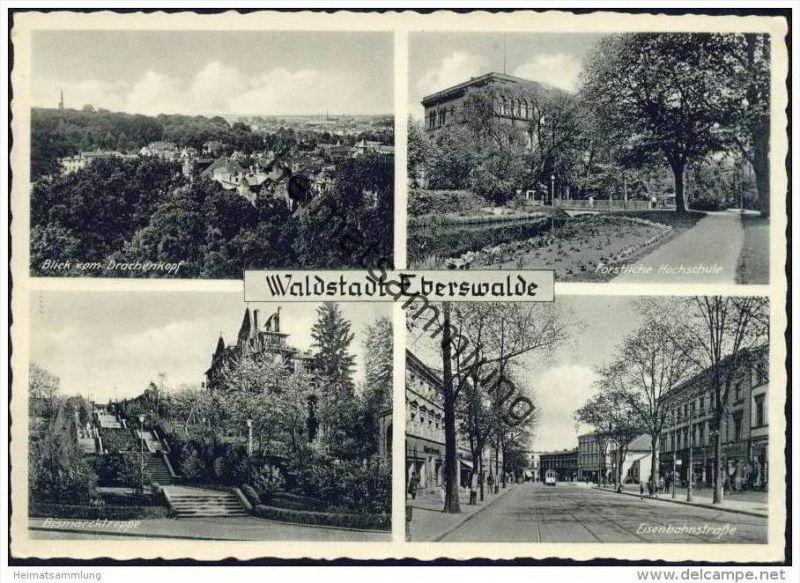 Eberswalde - Blick vom Drachenkopf - Forstliche Hochschule - Bismarcktreppe - Eisenbahnstrasse - AK Grossformat