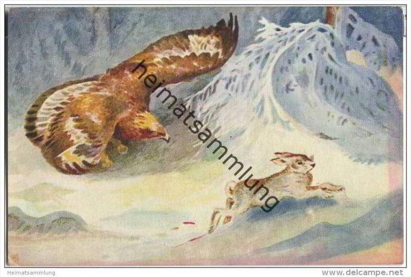 Jagd - Hase - Raubvogel