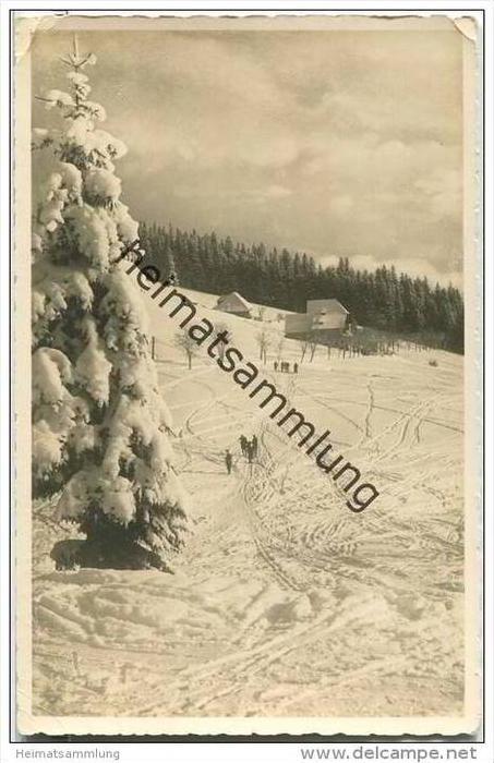 Feldberg - Skigebiet Rinken - Foto-AK