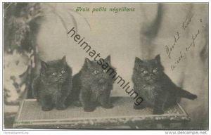 Katzen - Trois petits négrillons