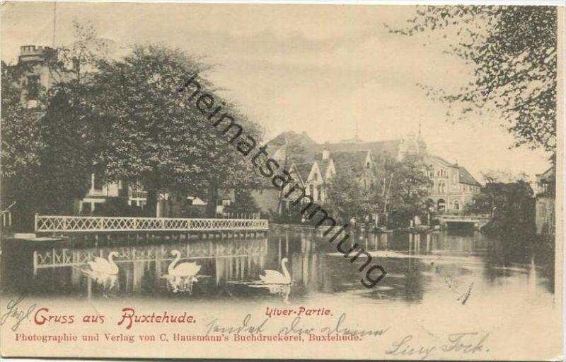 Gruss aus Buxtehude - Viver-Partie - Verlag C. Hausmann Buxtehude gel. 1901