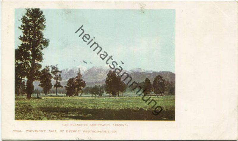 Arizona - San Francisco Mountains - Copyright by Detroit Photographic Co. 1902