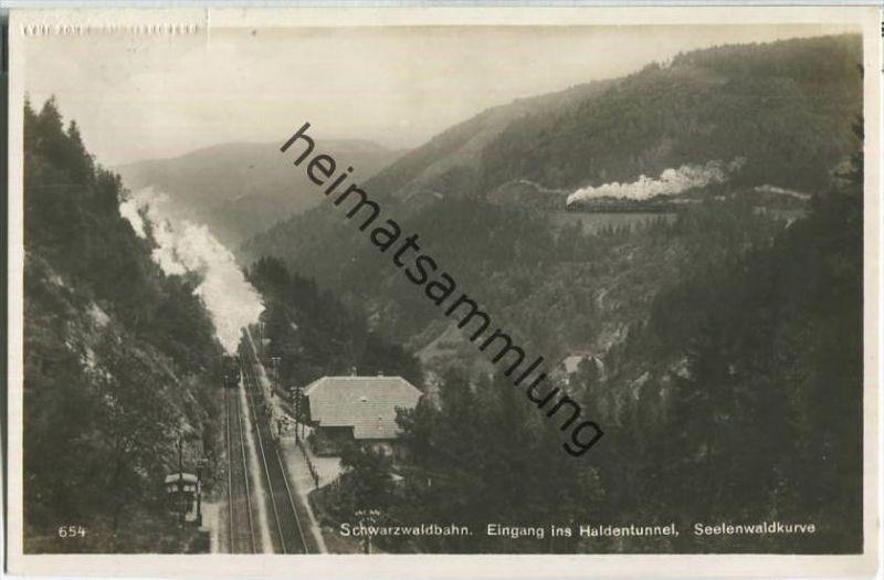 Schwarzwaldbahn - Eingang in den Haldentunnel - Seelenwaldkurve - Foto-Ansichtskarte - Verlag Emil Hartmann Mannheim