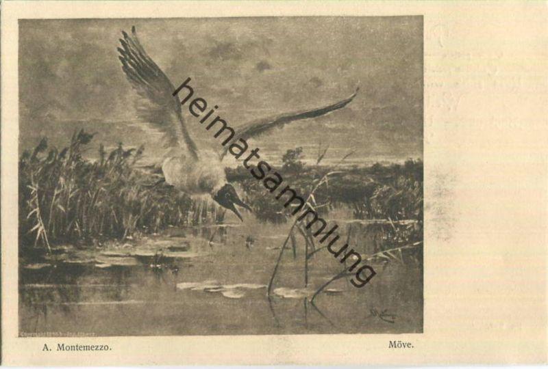 Jagd - A. Montemezzo - Möve - Künstleransichtskarte ca. 1900