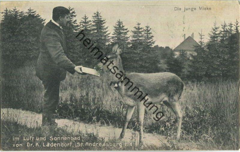St. Andreasberg - Dr. K. Ladendorf - Die junge Mieke - Verlag Franz Schneider St. Andreasberg