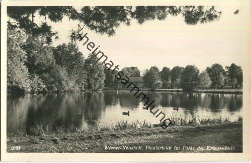 Wiener Neustadt - Pionierteich im Parke der Kriegsschule - Foto-Ansichtskarte