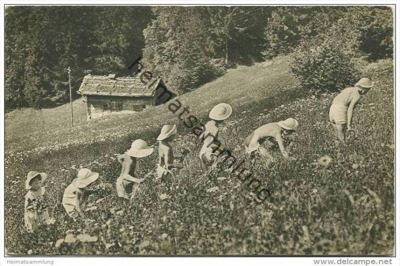 Fleurs des champs et fleurs humaines - Wildblumen und Blumenkinder