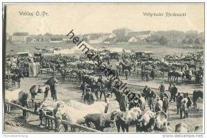 Snamensk (Kaliningrad) - Wehlau - Weltgrösster Pferdemarkt