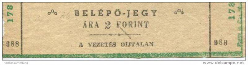 Ungarn - Belepojegy - a vezetes dijtalan - Ticket Eintrittskarte