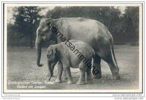 Basel - Zoologischer Garten - Elefant mit Jungem - Foto-AK