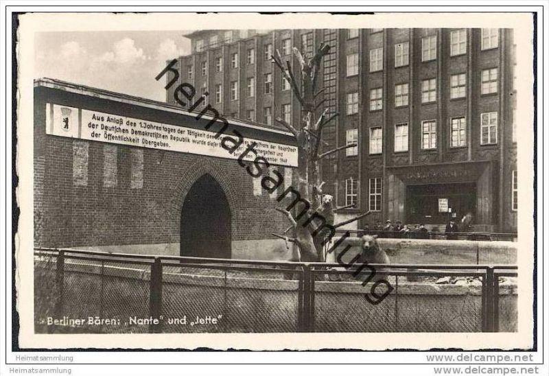 Berlin-Mitte - Berliner Bären Nante und Jette - Wiederherstellung des Zwingers zum 1. Jahrestag der DDR - 30.Nov.1949