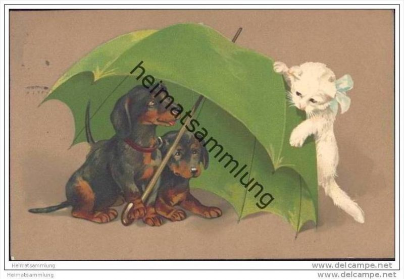 Zwei Dackel und eine Katze unter einem Regenschirm