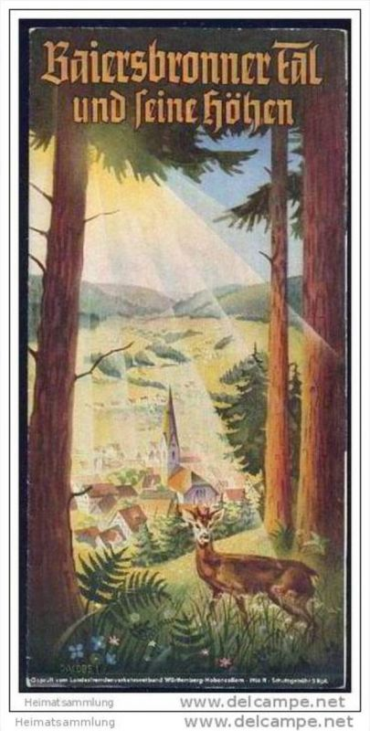 Baiersbronner Tal und seine Höhen 1938 - 8 Seiten mit 17 Abbildungen - Reliefkarte 0